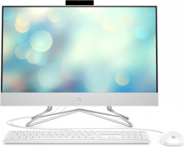 HP 24-df0100ng - 60,5 cm (23.8 Zoll) - Full HD - Intel® Core™ i5 Prozessoren der 10. Generation - 8